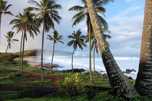 kitesurf hawaii